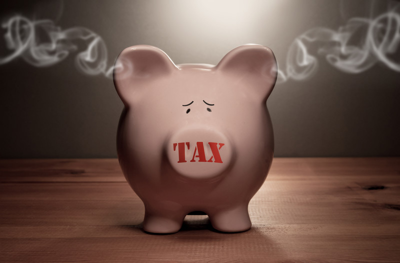 Tax Piggy Bank